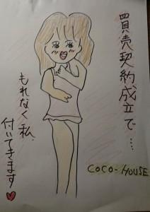 DSC_0860 (2)