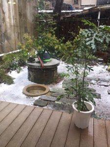 COCO庭、雪