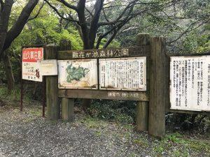 鎌倉湖?!