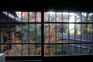 二階堂 今年が最後の紅葉