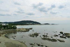 今夏の葉山の海